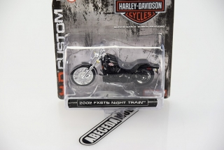 Harley Davidson 2002 FXSTB Night Train